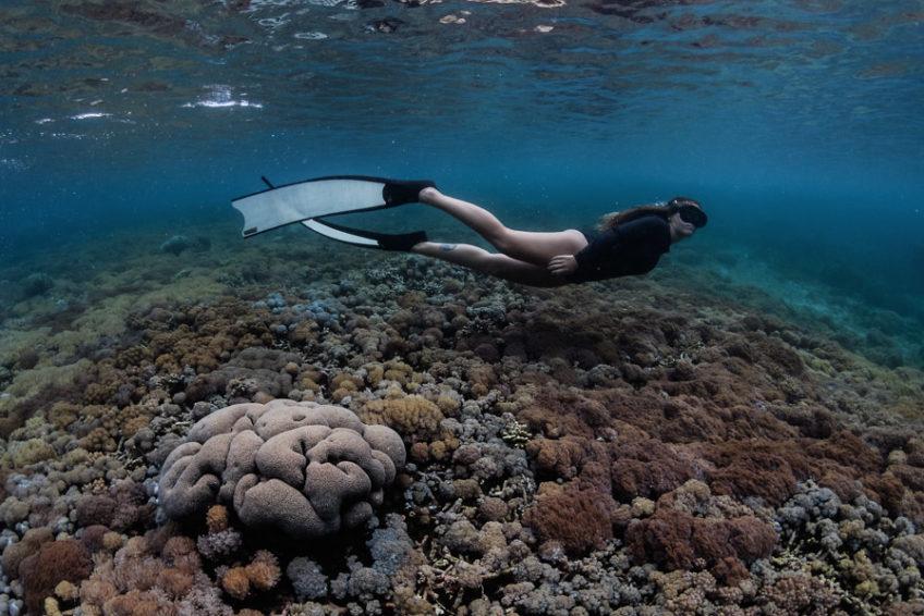 lombok-blue-marlin-26