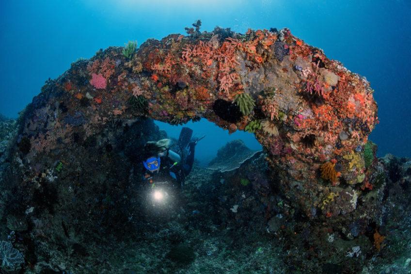 lombok-blue-marlin-6