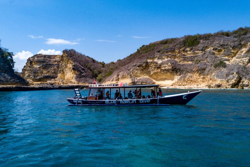lombok-blue-marlin-9